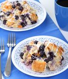 Blueberry Bread Pudding Royalty Free Stock Images