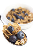 Blueberry breakfast cereal Royalty Free Stock Images