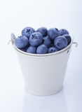 Blueberry in a bucket Royalty Free Stock Photos