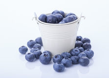 Blueberry in a bucket Stock Images