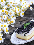 Blueberry cake with fresh fruits on plate Royalty Free Stock Image