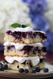 Blueberry cake with whipped cream Royalty Free Stock Photos
