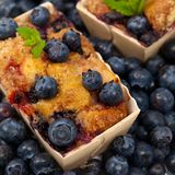 Blueberry Cakes Stock Images