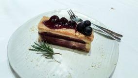 Blueberry cheese cake Stock Image