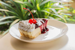 Blueberry cheese cake with cherry on top Stock Images