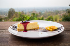 Blueberry cheese cake. Close up blueberry cheese cake bakery berry stock photo