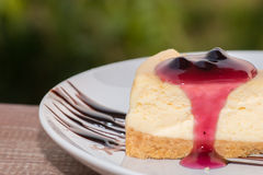 Blueberry cheese cake. Close up blueberry cheese cake bakery berry royalty free stock image