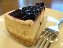 Blueberry cheese cake Royalty Free Stock Photos