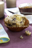 Blueberry cheese muffin Stock Photography