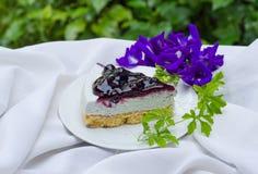 Blueberry cheese pie Stock Photos