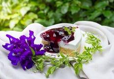 Blueberry cheese pie Royalty Free Stock Photos