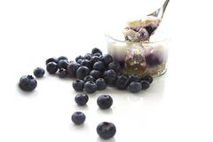 Blueberry Cheesecake. Shot on plain white background in a modern, stylish, contemporary way Royalty Free Stock Photos