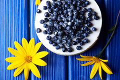 Blueberry cheesecake on a blue wooden background Stock Image