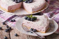 Blueberry cheesecake with coconut and mint close-up. horizontal Royalty Free Stock Image