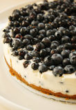 Blueberry cheesecake with cream on white platter Royalty Free Stock Photography
