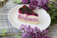 Blueberry cheesecake 19 Stock Photo