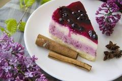 Blueberry cheesecake 20 Royalty Free Stock Image