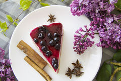 Blueberry cheesecake 24 Stock Image