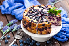 Blueberry cheesecake. With fresh berries and cottage cheese Royalty Free Stock Photos
