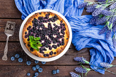 Blueberry cheesecake. With fresh berries and cottage cheese Stock Images