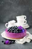 Blueberry cheesecake with fresh blueberries Royalty Free Stock Photography
