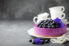 Blueberry cheesecake with fresh blueberries. Selective focus Royalty Free Stock Photography