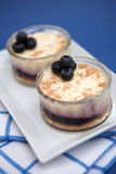 Blueberry cheesecakes Stock Images