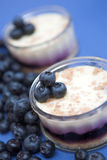 Blueberry cheesecakes royalty free stock photos