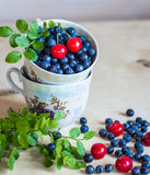 Blueberry and cherry still life Royalty Free Stock Images