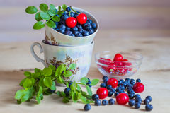 Blueberry and cherry still life on light background Stock Photo