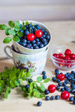Blueberry and cherry still life on light background Royalty Free Stock Photos