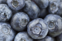 Blueberry closeup. Healthy rippen Blueberry Macro for background Royalty Free Stock Images