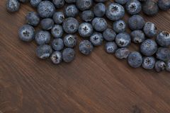 blueberry closeup Royalty Free Stock Photography