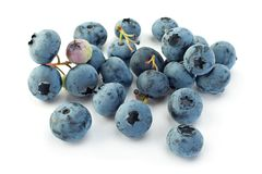 Blueberry  closeup on white Stock Images