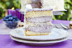 Blueberry and coconut layer cake Stock Photo