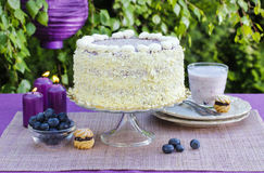 Blueberry and coconut layer cake Royalty Free Stock Photography