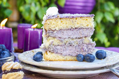 Blueberry and coconut layer cake Royalty Free Stock Photos