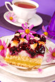Blueberry and coconuts cake. A piece of blueberry and coconuts cake with checkered pattern Royalty Free Stock Photography