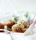 Blueberry Corn Muffins Royalty Free Stock Photos