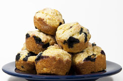 Blueberry Corn Muffins on a Blue Plate Stock Photos
