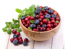 Blueberry and cowberry Stock Photos