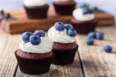 Blueberry and cream cheese  chocolate cupcake Stock Photos