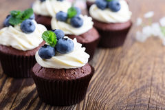 Blueberry and cream cheese  chocolate cupcake Stock Images