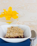 Blueberry crisp Royalty Free Stock Photography