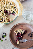 Blueberry crumble Royalty Free Stock Photo