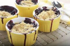 Blueberry crumble in ramekins stock image