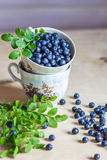 Blueberry in a cup and scattered on table, still life Royalty Free Stock Images