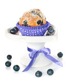 Blueberry cupcake on a decorated plate isolated on white. Blueberry muffin and some berries on a white plate, isolated royalty free stock image
