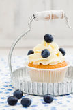 Blueberry cupcake. Cupcake with vanilla buttercream swirl and blueberries Royalty Free Stock Image