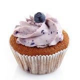 Blueberry cupcake Royalty Free Stock Photo